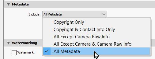 2021-09-09 08_17_42-Export One File.jpg