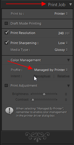 how can i add paper profiles in lightroom? | Lightroom Queen