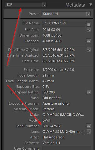 5-2 - Adobe Photoshop Lightroom - Library_2017-03-08_12-53-22.jpg