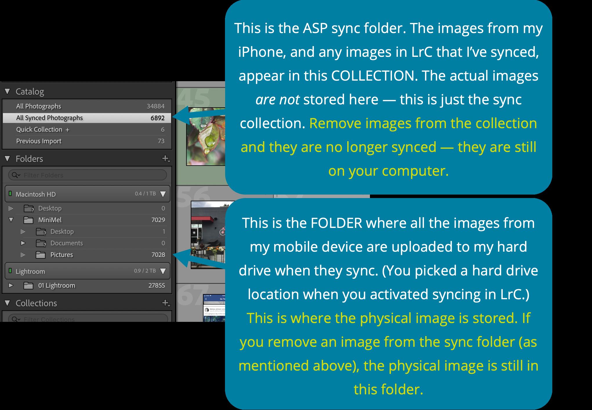 collection-vs-folder.png