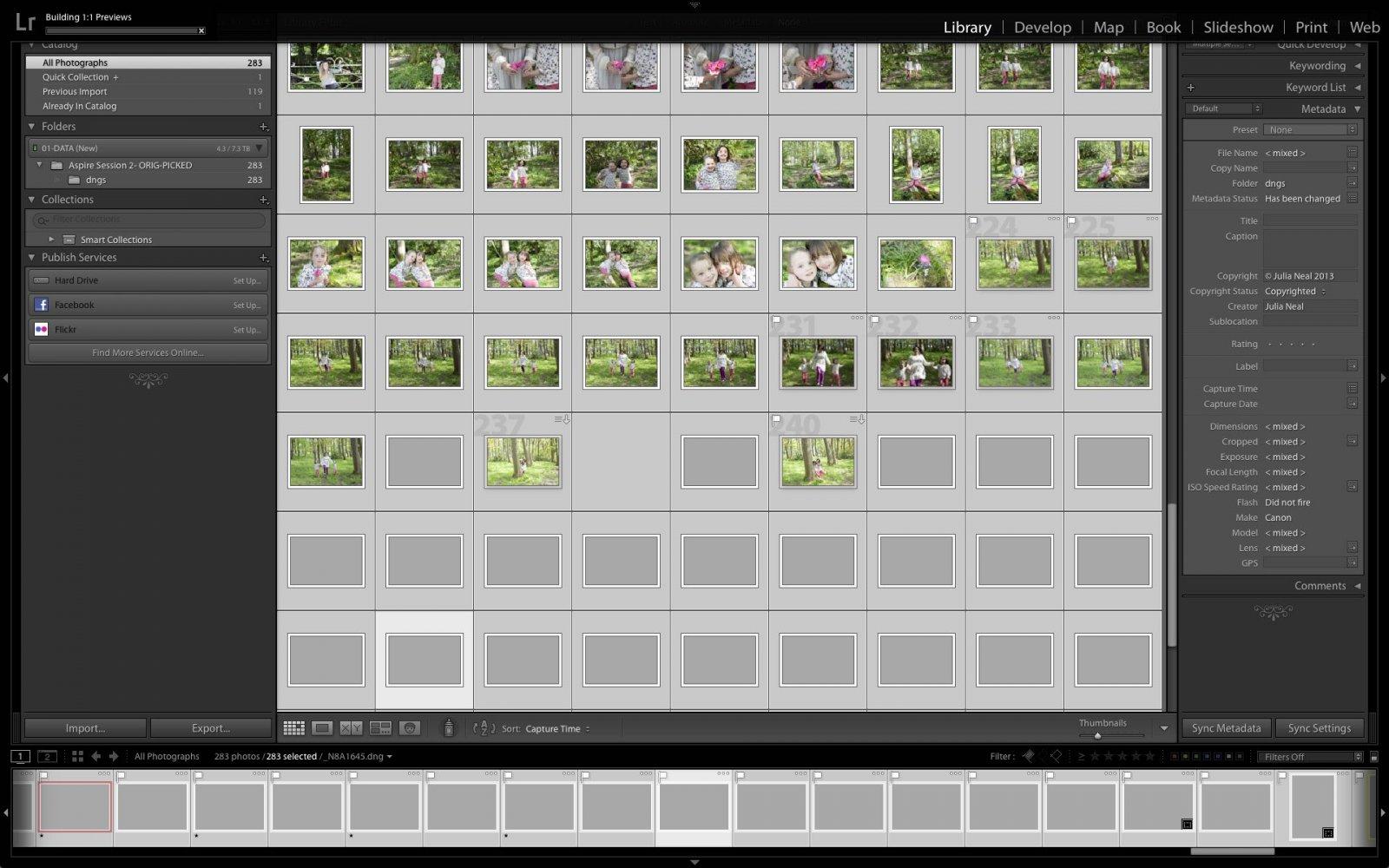 Grid view images vanishing 2.jpg