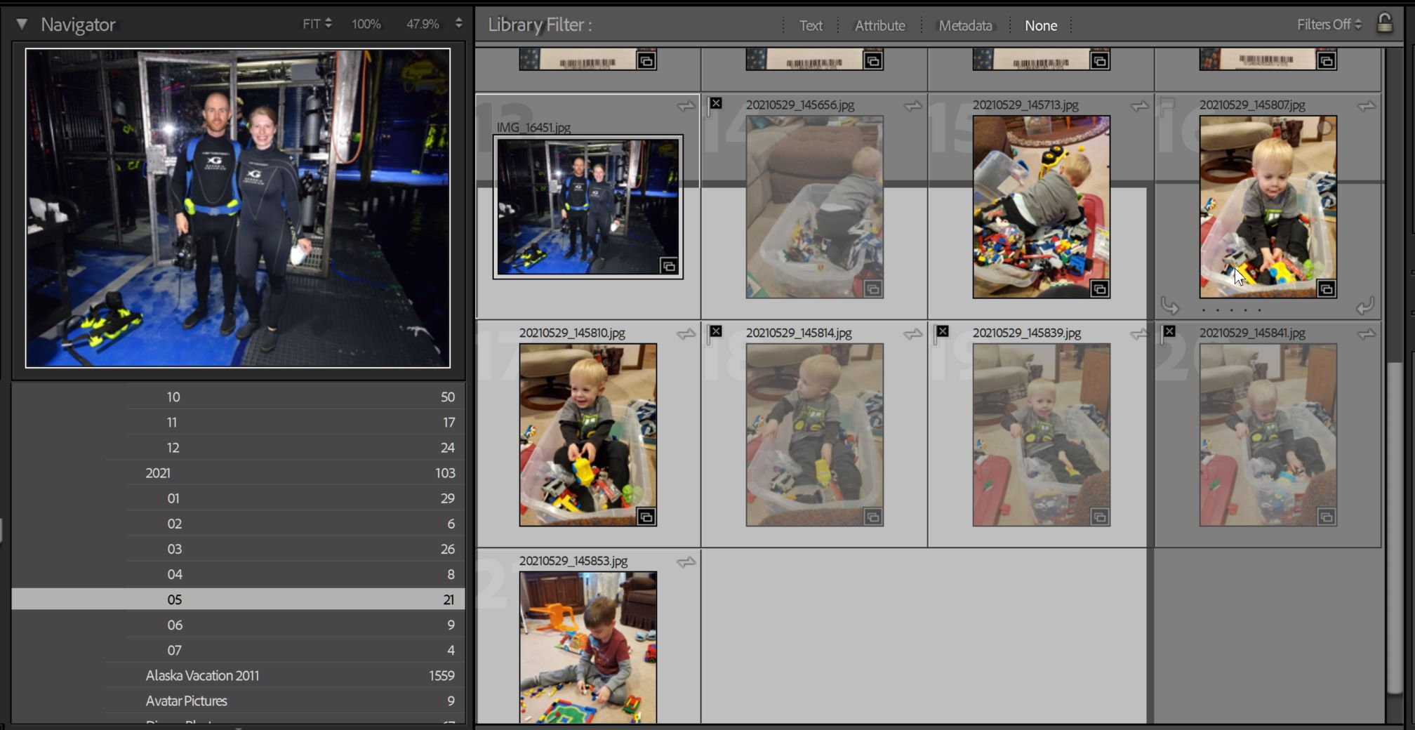 Lightroom Catalog-v10 - Adobe Photoshop Lightroom Classic - Library-2021-07-09 13_16_59.jpeg