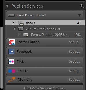 Publish Serv 01.jpg