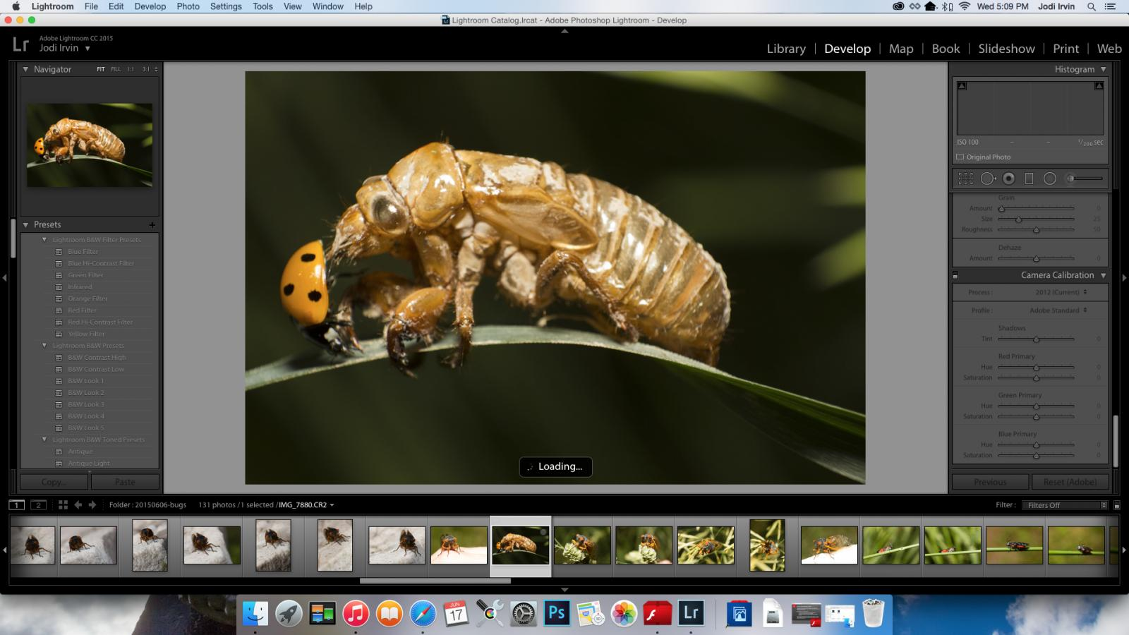 LR6 is auto enhancing my photos after import, why???? | Page