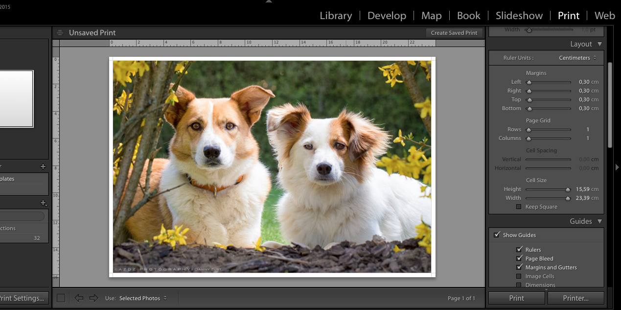 Problems with printing custom size with Epson printer | Lightroom
