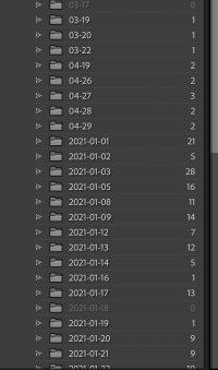 Lightroom files 2.jpg