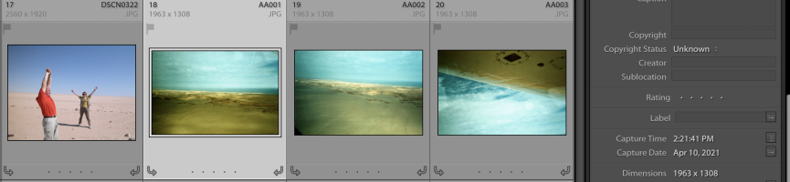 Screen Shot 2021-05-02 at 12.24.40 PM.png