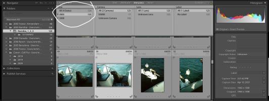 Screen Shot 2021-05-02 at 2.25.08 PM.png