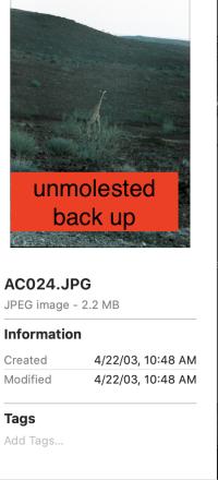 Screen Shot 2021-05-04 at 3.20.59 PM.png