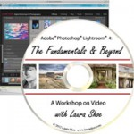 Looking for Lightroom video training?