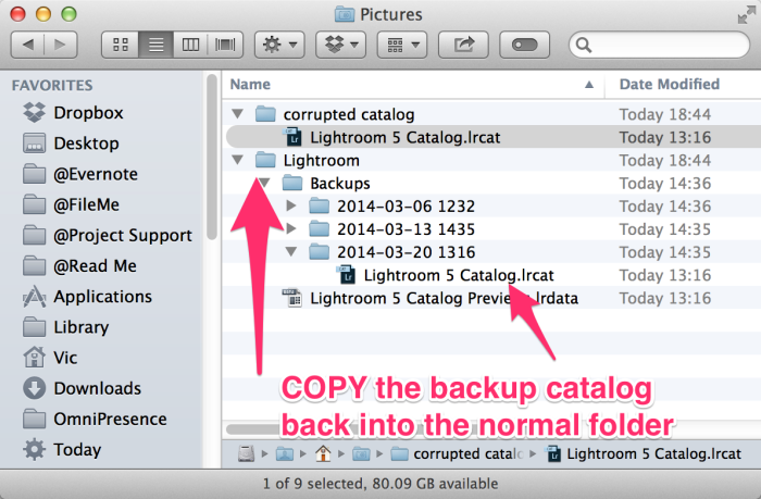 backups-copycatalog