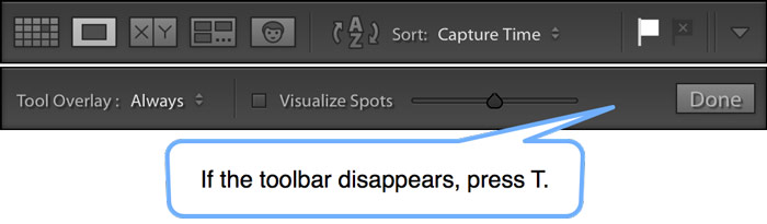 Lightroom missing toolbar