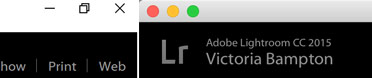 Lightroom window buttons
