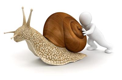 snailman400px