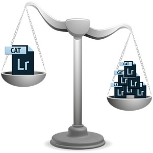 weigh-multi-cat